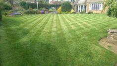 Lawncare Treatments, Great Bourton, Oxfordshire Lawn Care, Golf Courses, Green, Lawn Maintenance