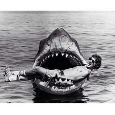Steven Spielberg laying in the mouth of Bruce the mechanical shark from Jaws, created by Bob Mattey and his team in 1974. #SFXatlas #sfx #anamatronic #mechanical #jaws #shark #stevenspielberg #ocean #greatwhite #megalodon #bruce #fisharefriendsnotfood #BehindTheScenes #fear