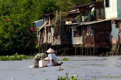 Trực khuẩn, E.coli trên sông Sài Gòn, Đồng Nai đều vượt quá chuẩn cho phép của WHO - http://www.daikynguyenvn.com/viet-nam/truc-khuan-e-coli-tren-song-sai-gon-dong-nai-deu-vuot-qua-chuan-cho-phep-cua-who.html