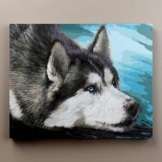Husky portrait - Paint by numbers for adults. Create beautiful art with our paint by numbers kits for adults. Hundreds of unique painting kits. Ideal for mindfulness and stress-relief. Start your journey today! Large Painting, Oil Painting On Canvas, Diy Painting, Painting & Drawing, Husky, Acrilic Paintings, Canvas Pictures, Framed Pictures, Unique Paintings