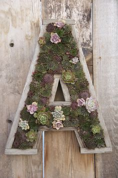 These rustic wood and sphagnum moss items are made by a California artist! Vertical Succulent Garden. Vertical Succulent Garden. They are all made from reclaimed fence boards, and repurposed into unique succulent p