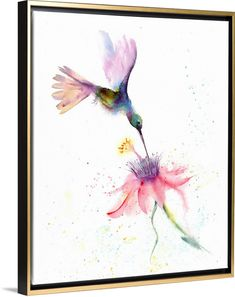 Buy Hummingbird with flower Watercolor by Olga Shefranov Watercolour on Artfinder. Discover thousands of other original paintings, prints, sculptures and photography from independent artists. Watercolor Hummingbird, Hummingbird Tattoo, Watercolor Bird, Watercolor Paintings, Original Paintings, Hummingbird Illustration, Watercolor Artists, Watercolor Portraits, Watercolor Landscape