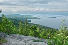 Koli National Park, Finland.