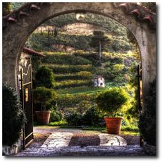 Google Image Result for http://thefrenchprovincialfurniture.com/wp-content/uploads/2012/05/French-Provence-Outdoor-Decorating-And-Gardening-500x500.png