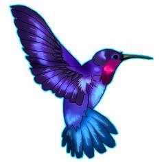 hummingbird tattoo designs   More Tattoo Images Under: Hummingbird Tattoos