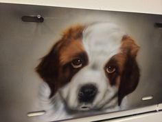 Air Brush your pet today! 610-921-8300