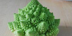 IQS: Weird Vegetables