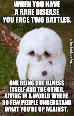 When you have a rare disease you face two battles. One being the illness itself and the other, living in a worls where so few people understand what you're up against. Uber Humor, Rare Disease, Trending Memes, Workplace, Funny Jokes, Celebrities, Owls, Face, People