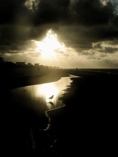 St. George Island Florida 2012 What I Have Learned So Far By Mary Oliver Meditation is old and honorable, so why should I not sit, every morning of my life, on the hillside, looking into the shining world? Because, properly attended to, delight, as...