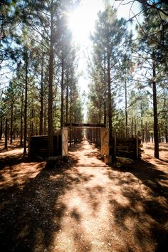 Retreat to the serenity of Florence Guest Farm and Wedding Venue in Mpumalanga, South Africa for a wedding to remember.