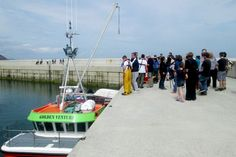 The crowd watches the fish landing on 1 August...