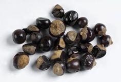 guarana, getrocknet / dried