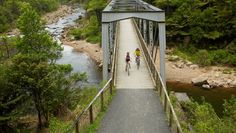 The trail is the easiest cycle trail in New Zealand to ride with the longest tunnel and showcases some of the best scenery New Zealand has to offer. New Zealand North, Bike Path, Bike Trails, Auckland, Day Trips, Adventure Travel, Paths, Scenery, Places To Visit
