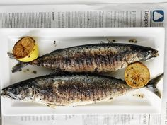 grilled fish, healthy and delicious