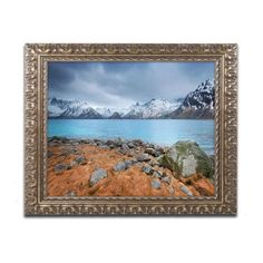 Trademark Fine Art Philippe Sainte-Laudy Now is Now Framed Wall Art - PSL0556-G1