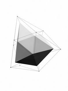 Polygon on Behance