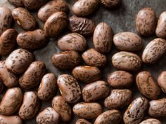 The Serious Eats Guide to Beans | Serious Eats