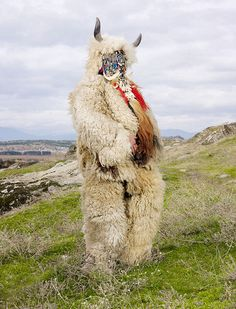 Costume of a still-practiced pagan ritual in Europe. Documented by Charles Fréger.