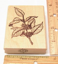 FLOWERING & FRUITFUL BRANCH BY GOOD STAMPS STAMP GOODS Rubber Stamp   #GOODSTAMPSSTAMPGOODS #RUBBERSTAMP