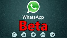 How to Direct Download Whatsapp Beta each time it gets Released