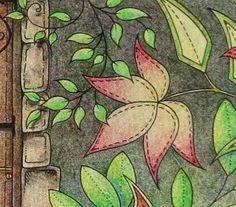 Passion for Pencils: My Secret Garden colouring book, part 4 | art ...