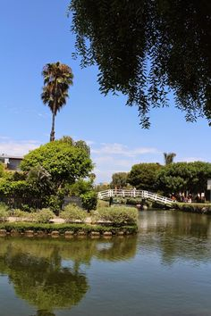 the canals at venice beach  http://www.iscreamforsunshine.com/2014/08/the-canals-at-venice-beach.html