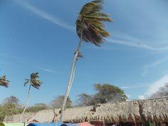 Baru Peninsula (also known as Isla Baru), Cartagena de Indias, Colombia.
