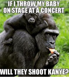 If I throw my baby on the state at a concert will they shoot Kanye?