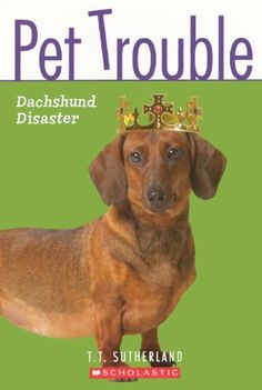 Dachshund Disaster (Pet Trouble (Prebound)) by T. T. Sutherland, http://www.amazon.co.uk/dp/0606150382/ref=cm_sw_r_pi_dp_24L-sb0M9NR36