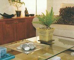 """""""Sentimientos y Recuerdos"""": Piedras, plantas, libros, puede usarse como elemento decorativo."""