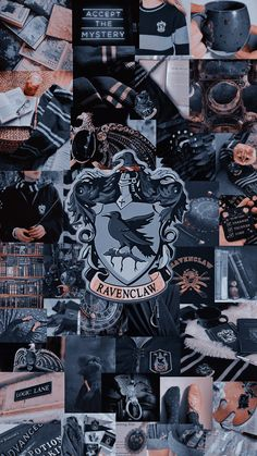 Capa Harry Potter, Harry Potter Icons, Draco Harry Potter, Harry Potter Pictures, Harry Potter Tumblr, Harry Potter Houses, Harry Potter Theme, Harry Potter Characters, Ravenclaw