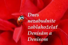 Dnes oslavujú meniny všetky DENISY a DENISOVIA. VŠETKO NAJLEPŠIE K SVIATKU, milé oslávenkyne a drahí oslávenci!