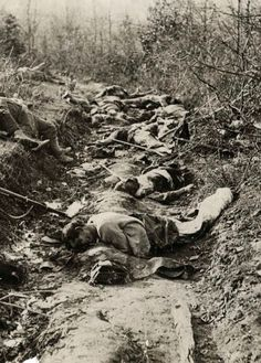 A trench lies still with the bodies of Austrian soldiers, World War One, First World, Martyrs' Day, Man Of War, Canadian History, War Photography, Lest We Forget, World History, Historical Photos