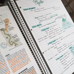 A Studyblr Blog — getstudyblr: 02 • 01 • 16    [troy bolton's...