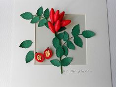 This rose hip greeting card is absolutely precious!