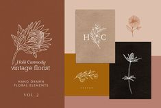 Ad: Hand drawn floral logo elements by Holii Carmody on All you need to create a modern hand drawn floral logo in Adobe Illustrator! Including Australian native inspired plants (and some others Creative Illustration, Graphic Illustration, Floral Illustrations, Digital Illustration, Paper Daisy, Sea Holly, Floral Logo, Floral Card, Pencil And Paper
