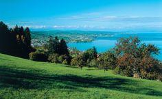 St.Gallen in der Schweiz, liegt unweit des #Bodensee St Gallen, Switzerland, Places Ive Been, Golf Courses, Beautiful, Old Town, Places