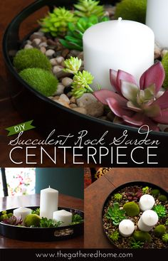 Learn how to create a soothing succulent rock garden centerpiece - inspired by an expensive Crate and Barrel look!