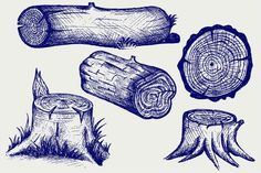 Timber and stump Graphics Tree rings, wood, vector set banners and signs. The works performed in two styles: doodle style and by LineworkStock Landscape Drawings, Art Drawings, Tree Trunk Drawing, Tree Sketches, Nature Drawing, Tree Stump, Pen Art, Creative Sketches, Pencil Illustration