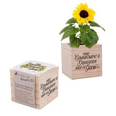 """Spice up employee appreciation with an unexpected and charming gift! This plant cube includes everything they'll need to grow their own Sunflowers and includes """"Your Commitment & Dedication Help Us Grow"""" Employee Appreciation Gifts, Employee Gifts, Volunteer Gifts, Volunteer Week, Gourmet Gift Baskets, Employee Recognition, Coffee Gifts, Candy Gifts, Thank You Gifts"""