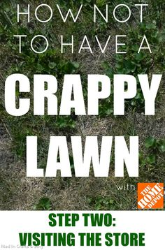 How NOT to Have a Crappy Lawn:  Visiting the Store