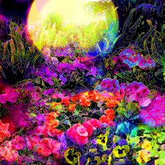 Midnight Garden by brillianthues, via Flickr