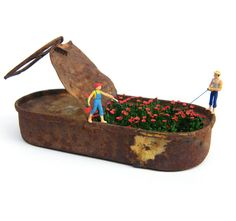 Lata pesca amapolas, by Casetamágica | Two miniature figures fishing out of a tin can with mini red poppies growing inside of it. Can imagine this could work as street art as well.