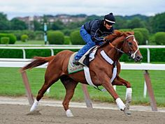 I'll Have Another  Winner of Santa Anita Derby-G1; Kentucky Derby-G1; Preakness-G1 sold for 10M