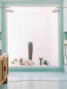 bathroom shower with aqua tile and cactus garden window display. Shower Rose, Shower Arm, Bathroom Tapware, Master Bathroom, Turquoise Sofa, Brass Shower Head, Bathroom Interior, Bathroom Ideas, Bathroom Inspo