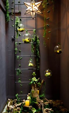 Love this concept, it looks beautiful and not complicated for a small place like mine, I even own the little spheres! 25 Wonderful Mini Indoor Gardening Ideas