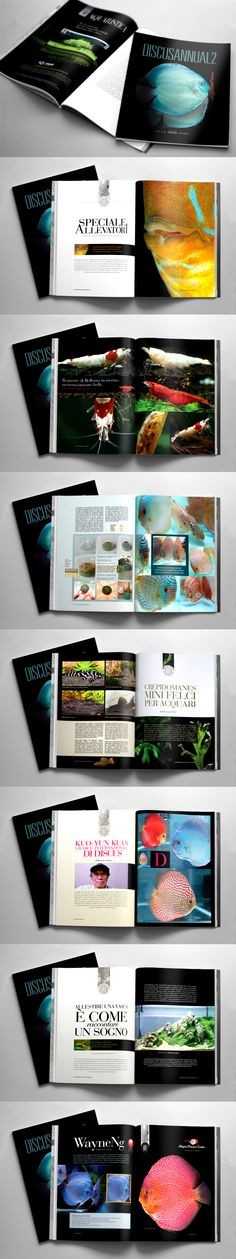Discus Dream Monography