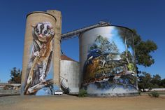 During the recent Benalla Wall to Wall Festival, artist Jimmy Dvate began an addition to his wonderful work of a Barking Owl and local scenery already on the Goorambat Silo Art (completed in Best Street Art, 3d Street Art, Street Art Graffiti, Street Artists, Graffiti Artists, Horse Mural, Pop Art, Building Art, Art Mural