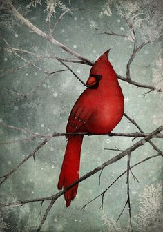 The Cardinal  Illustration print size 7 x 5 by majalin on Etsy, kr139.00-https://www.etsy.com/treasury/OTI3NDI1OXwyNzI0MjQ3MDUw/red-accents?ref=pr_treasury