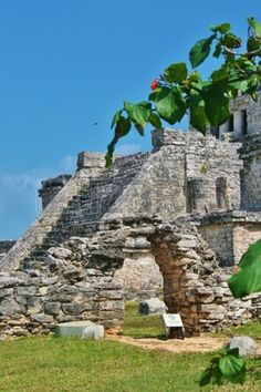 Dig Into The Mayan Past Take a trip into the past. Follow the footsteps of Mayan priests, brave Spanish conquistadors, and 19th century adventurers who climbed the same steps that you are about to embark on